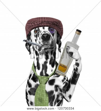 Dog Drunkard Holding A Cigarette And A Bottle Of Alcohol