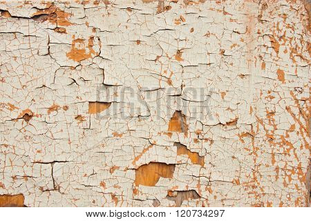 Old Wooden Surface With A Chappy Paint