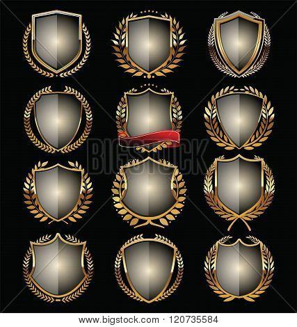 Golden shield retro vintage design vector illustration