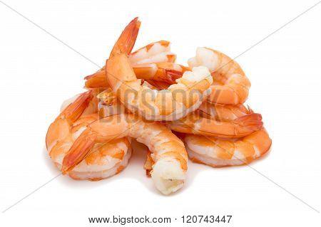 Shrimps Isolated On White Background Concept