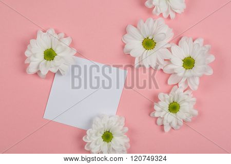white flowers on a pink background with note book
