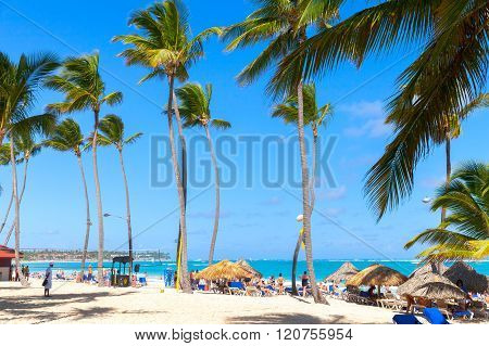 Tourists Relaxing Under Palms In Punta Cana Resort