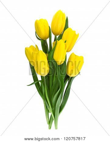 Bouquet Of Yellow Tulips Isolated On White Background With Clipping Path. Top View