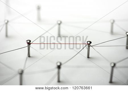Linking entities. Hotline, high bandwidth.  Network, networking, social media, connectivity, internet communication abstract. Single red wire in a web of silver wires on white background. poster
