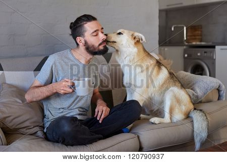 Pet owner receiving a kiss lick from his pet dog on the couch sofa, loving affectionate bond