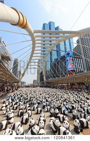 Pandas In Bangkok