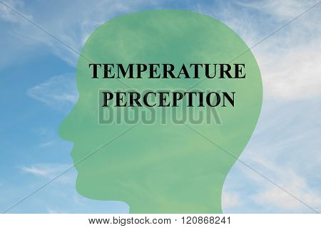 Temperature Perception Concept