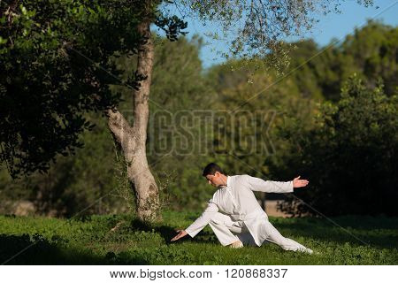 Young Man Practicing Tai-chi Outdoors In The Park