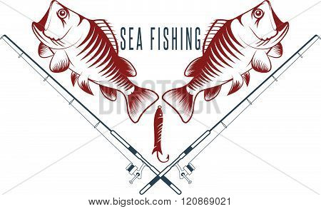 Sea Fish Vintage Vector Illustration With Sea Bass