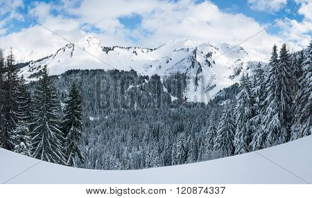 Winter Mountain View In The Alps.