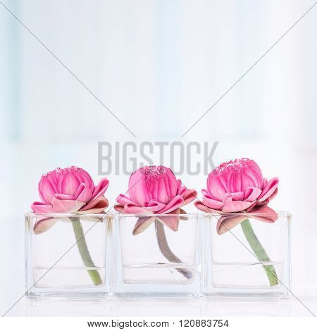 Lotus Flower Decoration