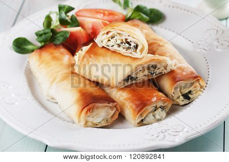 Pita zeljanica, balkans phyllo pastry filled with cheese and spinach