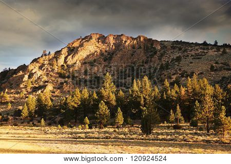 Mountain and Forest With Dark Skies