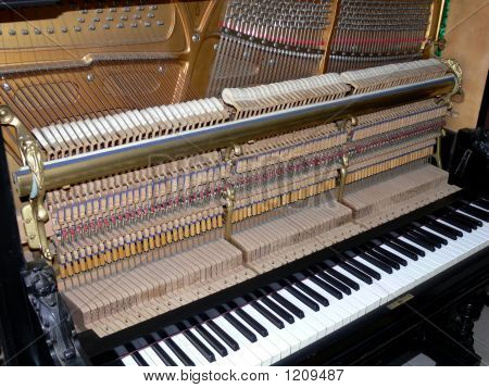 Inside Of Piano