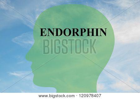 Endorphin Concept
