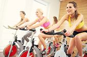 Picture of sporty group of women on spinning class poster
