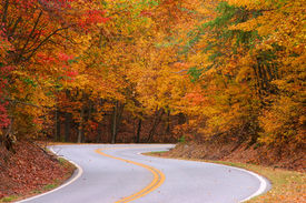 Colorful Road