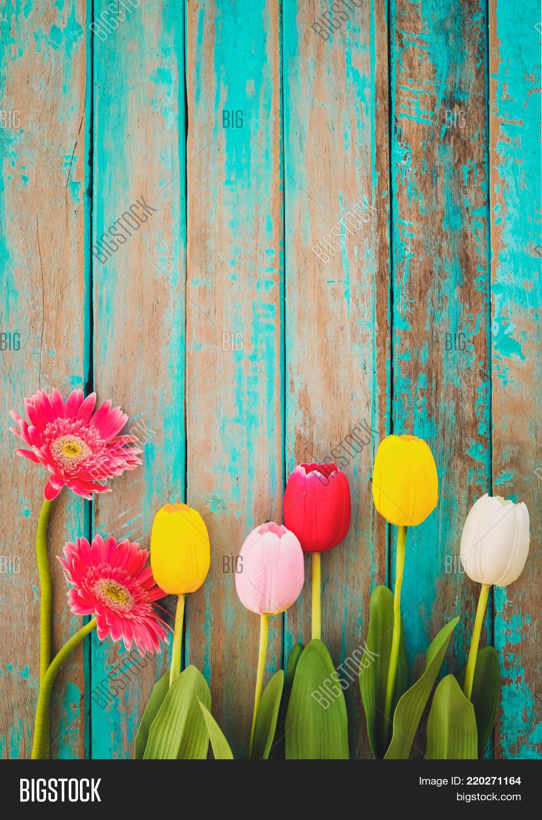 Colorful Flowers On Image Photo Free Trial Bigstock
