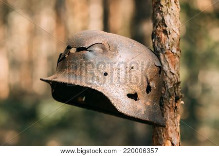 Damaged By Bullets And Shrapnel Metal Helmet Of German Infantry Wehrmacht Soldier At World War II. Rusty Helmet Hanging On Tree Trunk.