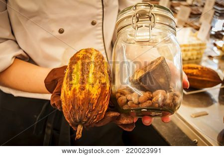 Young woman holding cocoa bean fruit with cocoa beans in a jar.