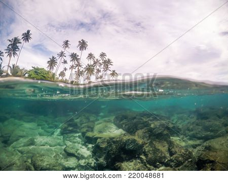 Split view cross section of sea water and palm trees in Samoa, South Pacific Island. Rocks and fish underwater in transparent clear water; cloudy sky above, photographed while snorkelling.