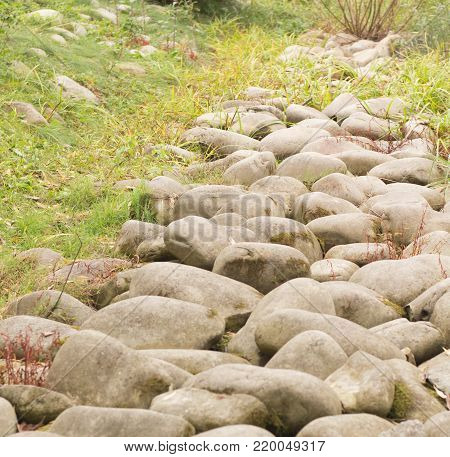 Through granite stones boulders the green grass simply grows. Force of nature concept