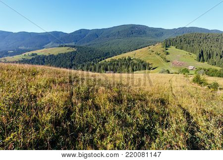 Summer mountain view (Carpathians, Kryvopillja, Verkhovyna district, Ivano-Frankivsk region, Ukraine).