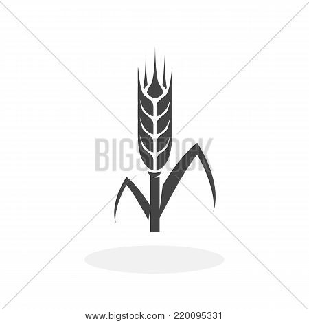 Wheat icon isolated on white background. Wheat vector logo. Flat design style. Modern vector pictogram for web graphics - stock vector
