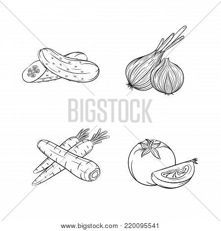 Collection set of hand drawn vegetables isolated on white background. Vector illustration of cucumber, onion, carrot and tomato in vintage sketch style - stock vector