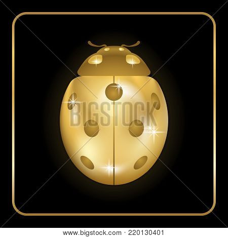 Ladybug gold insect small icon. Golden metal lady bug animal sign, isolated on black background. 3d volume bright design. Cute shiny jewelry ladybird. Lady bird closeup beetle. Vector illustration