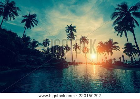 Tropical sea beach with silhouetted palm trees during sunset.