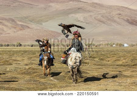 SAGSAY, MONGOLIA - SEP 28, 2017: Eagle Hunters traditional clothing, while hunting to the hare holding a golden eagles on his arms in desert mountain of Western Mongolia.