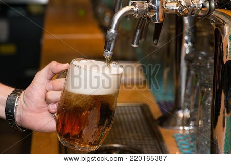 Close-up of bartender hand at beer tap pouring a draught lager beer