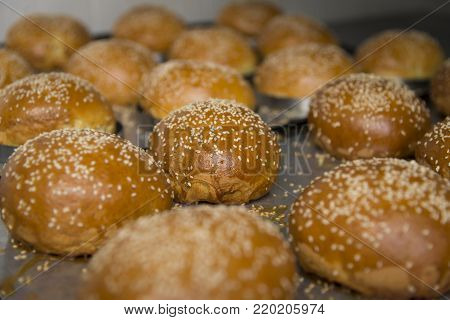 Freshly baked buns with sesame seeds, lying on a metal sheet