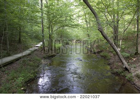 Stream And Walkway