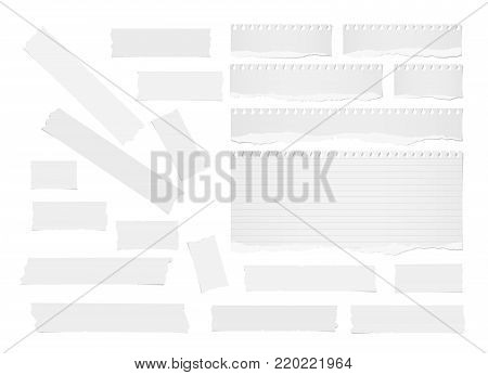 Ripped lined note, notebook paper strips, sheets, blank adhesive, sticky tape for text or message stuck on white background.