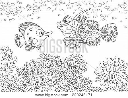 A funny butterfly fish and a mandarin fish swimming over a coral reef in a tropical sea, a black and white vector illustration in cartoon style for a coloring book