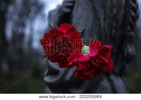 beautiful red flowers on the monument. landmark, medieval, naples napoli