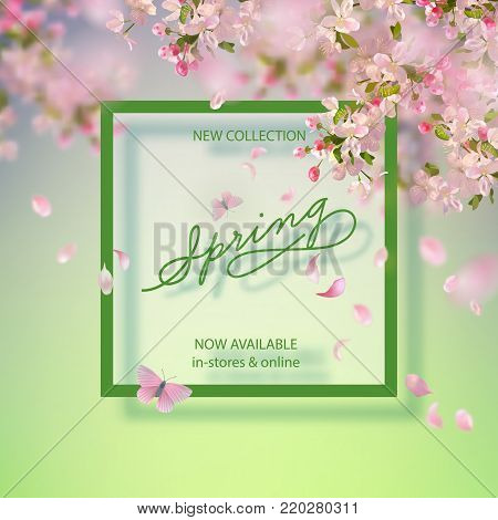 Vector background with spring apple blossom. Blossoming branch in springtime, frame and text