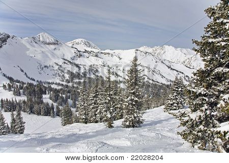 Snowy Winter Scene in the Mountains