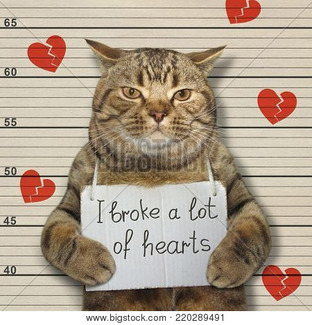 The bad cat broke a lot of hearts.