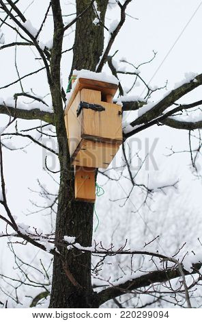 wooden nesting box on the tree in winter