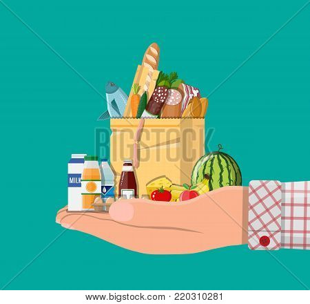 Paper shopping bag full of groceries products in hand. Grocery store. Supermarket. Delivery. Fresh organic food and drinks. Vector illustration in flat style