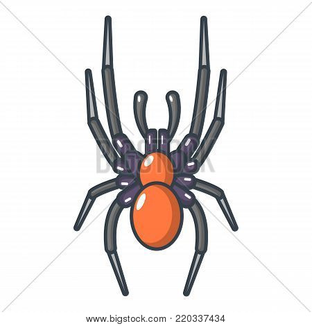 Spider icon. Cartoon illustration of spider vector icon for web