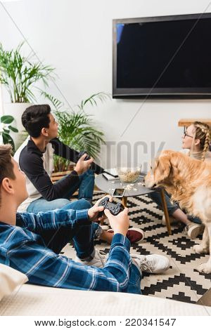 boys playing video game using tv flat screen