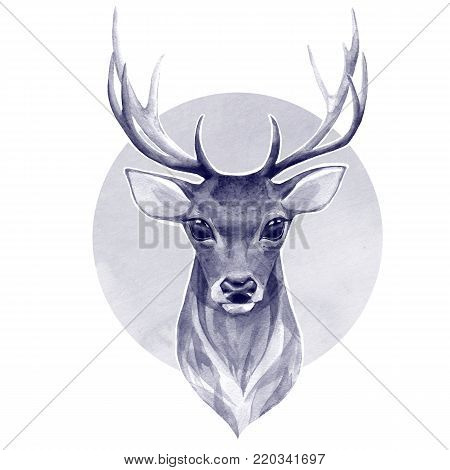 Noble deer. Watercolor monochrome illustration. Hand painted