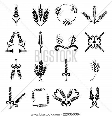Ear corn icons set. Simple illustration of 16 ear corn vector icons for web