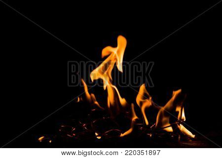 Nature Fire Flames At Dark Night. Freeze Motion Of Red-yellow Fire Flames Burning.burning Camp Fire