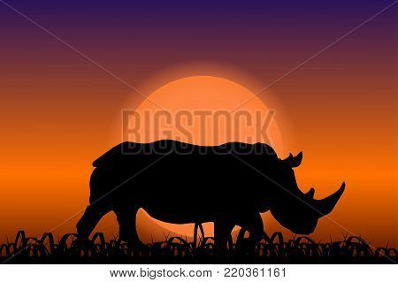 Rhino in the sunset. Black african silhouette. Vector illustration