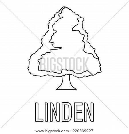 Linden icon. Outline illustration of linden vector icon for web